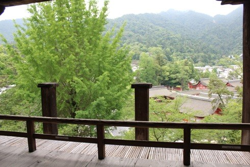 宮島 千畳閣(豊国神社) から厳島神社を見下ろす