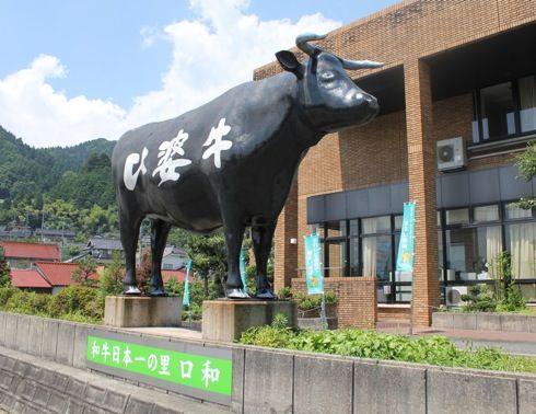 黒い牛がドーン!比婆牛は広島牛としてブランド化へ