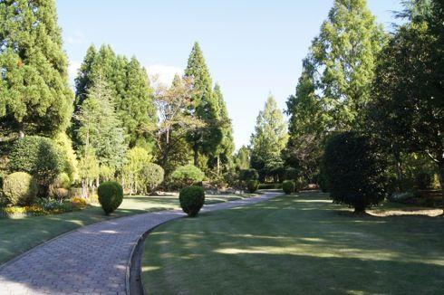 湧永庭園 芝の道2