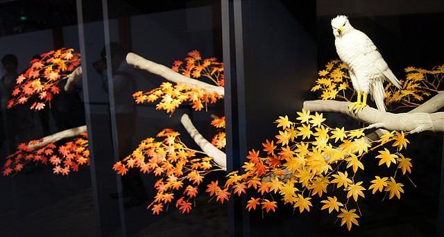 ひろしま菓子博 工芸菓子「光」は、神楽さんの作品