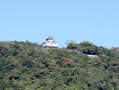 岩国城の画像