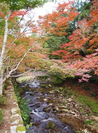 佛通寺の紅葉と橋