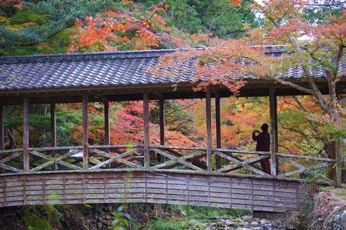 佛通寺 紅葉に包まれる橋