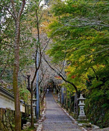 今高野山 お寺の山道入口