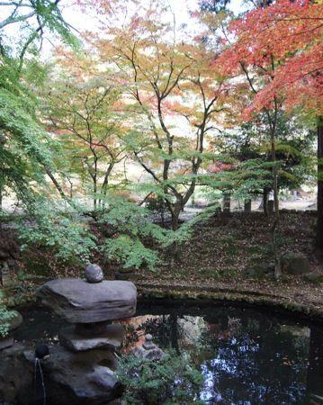 今高野山 紅葉の画像9