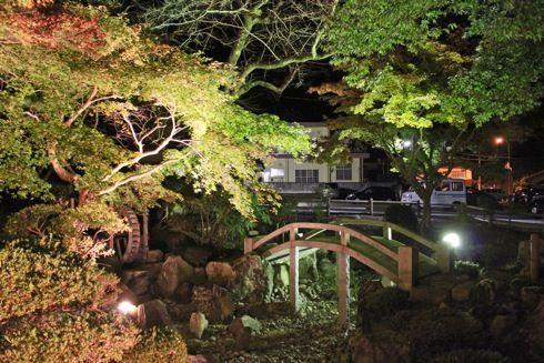 尾関山公園の 紅葉ライトアップ 画像3