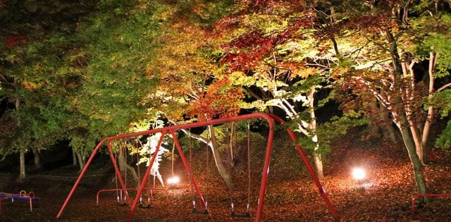尾関山公園の 紅葉ライトアップ、昼間とは違う表情を