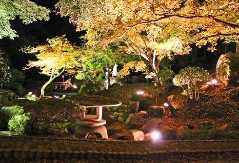 尾関山公園の 紅葉ライトアップ 画像7