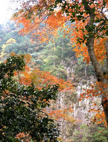 三段峡 紅葉の様子4