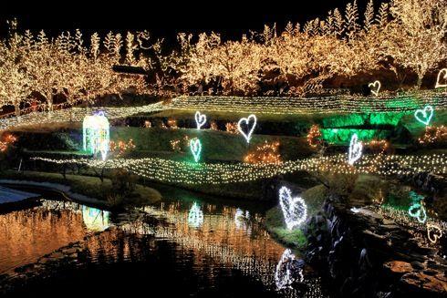 備北丘陵公園イルミネーション 2013 画像5