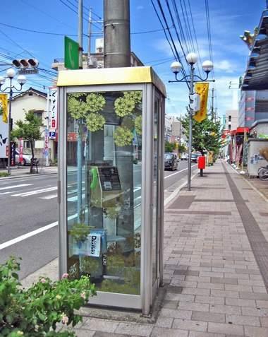 願いを伝える電話ボックス、コイン通りに金色の電話ボックス