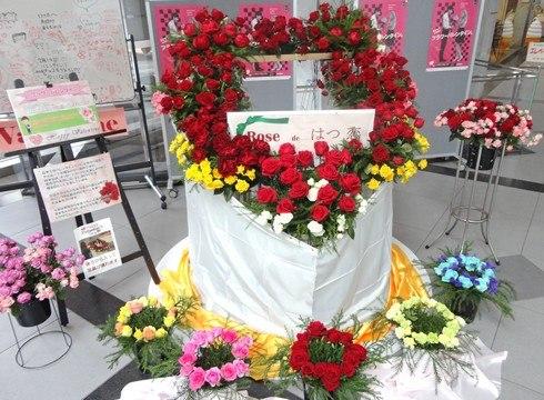 バレンタインには薔薇の花を!贈る本数で意味が変わる、バラの花言葉