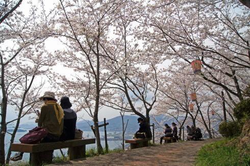 安芸津 正福寺山公園 画像7