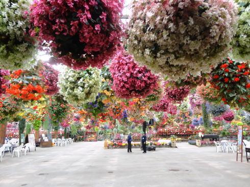 松江フォーゲルパークの温室