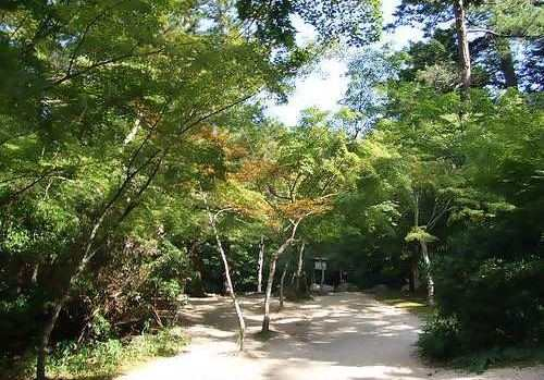 もみじ谷公園
