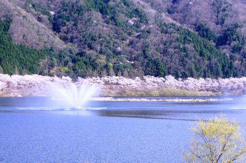 2014土師ダム見学会、年に一度の開放日にカヌー無料体験も