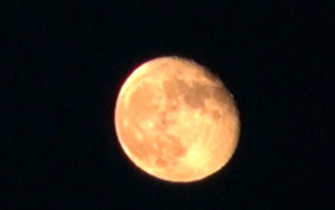 なんかコワい?月がオレンジ色で大きく見えるのはなぜ?
