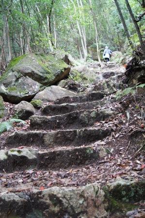 三倉岳 登山の様子3