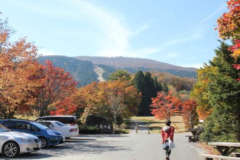 ひろしま県民の森 公園センター周辺の紅葉