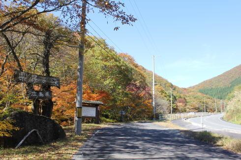 ひろしま県民の森 周辺の紅葉の様子2