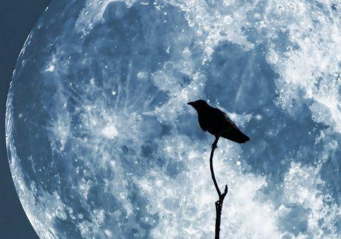 171年ぶり3回目の名月、「後の十三夜」が見られる特別な夜