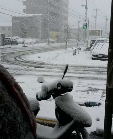 12月17日の大雪 広島県 段原