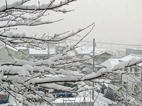 12月17日の大雪 廿日市市3