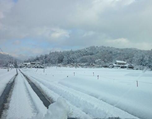12日から週末にかけて大雪の恐れ、北部で降雪平年の3倍も?