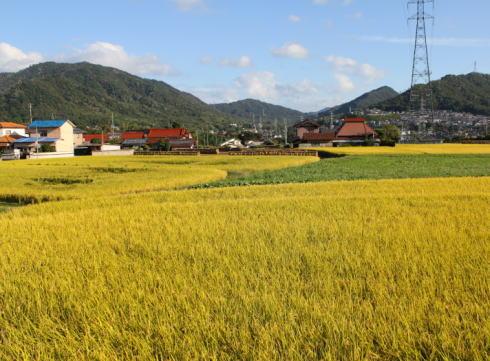 熊野町の風景 田園