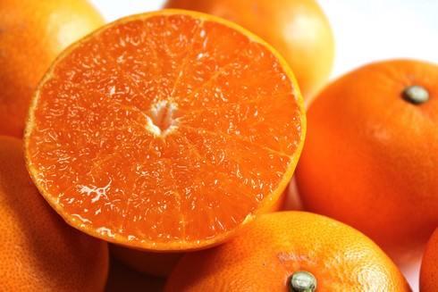広島せとか、溢れる果汁と皮の薄さはまさに「奇跡の柑橘」