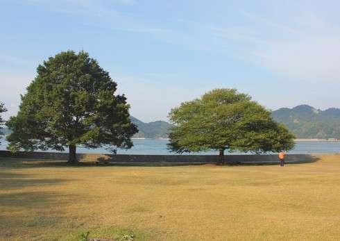 因島大橋記念公園、芝生広場
