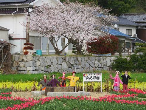 佐木島の風景3