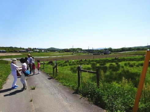 三良坂フロマージュ 牧場の画像