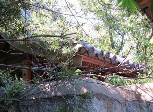 玉津島の神社