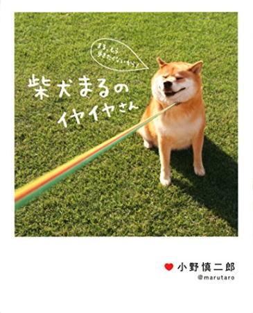 災害救助犬 夢之丞と世界一有名な柴犬まる、神石高原でご対面