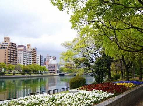 広島市 川沿いにも綺麗な花壇が