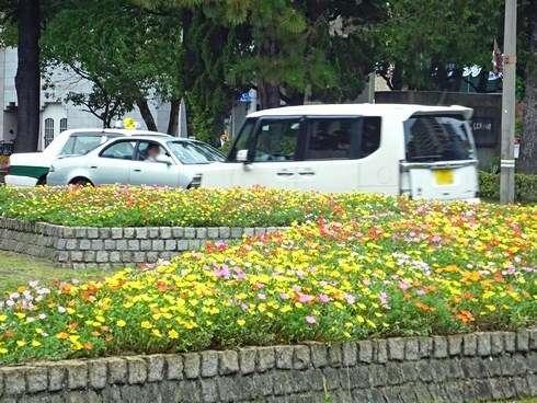 広島市の街中に綺麗な花が植えられている風景
