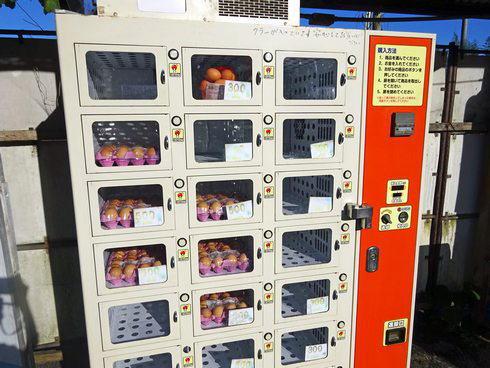 三次 卵の自動販売機 画像2