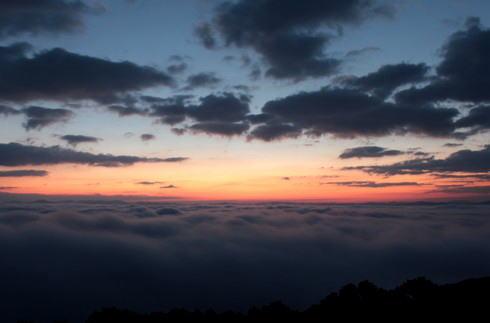 三次市 霧の海 写真2