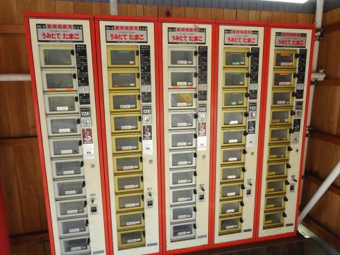 卵の自動販売機(東広島市豊栄)画像2