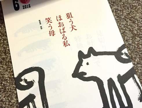 オタフクソース 2016 お好み焼き川柳カレンダー