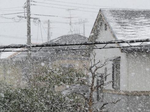 広島の冬景色 廿日市市の風景