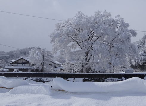 広島の冬景色 庄原市の風景7