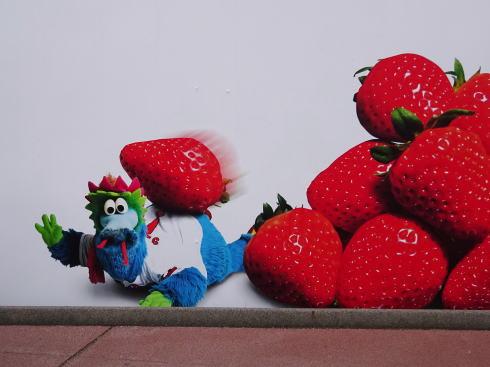 カープウォール2016はスラィリーと「真っ赤」な果実たち