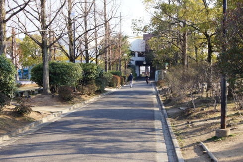 福山メモリアルパーク 犬の散歩も
