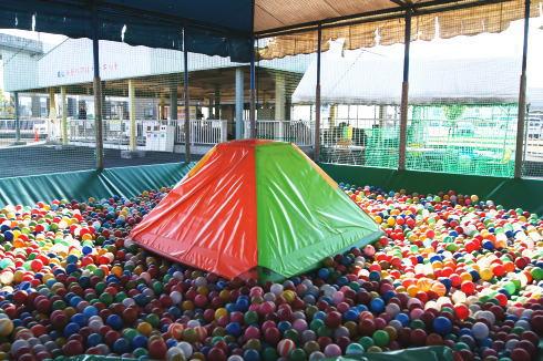 福山メモリアルパーク、スケート・プールも楽しめる子供のプチ遊園地