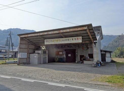 安芸高田市 ミツマタ群生地 写真9