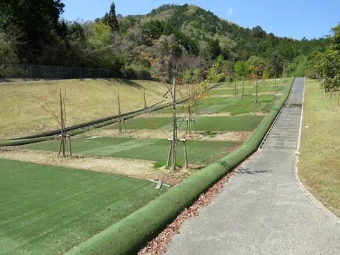 花みどり公園の芝すべり場