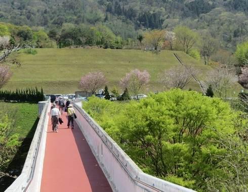 花みどり公園、ドッグランにつながる橋