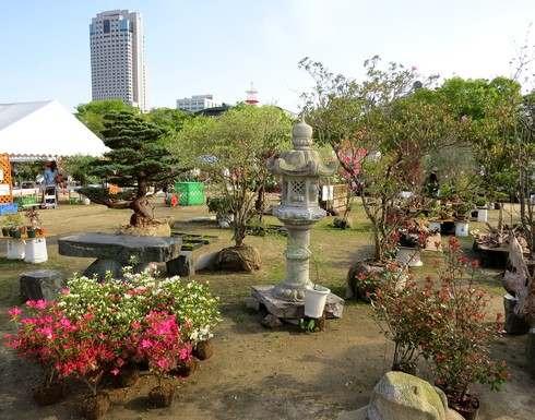広島で春のグリーンフェア